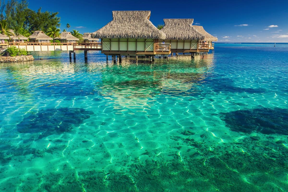 جزر المالديف 航空券